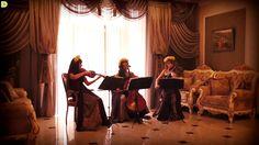 """ZAZ """"Je veux"""" - скрипичный кавер Violin Group DOLLS (струнное трио)"""