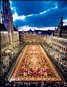 This is an image of the Grand Place located in downtown Brussels, Belgium. A carpet of flowers that covers the main square is made in August every two years. The Grand Place was originally a market square but in the mornings is a place where you can buy fresh flowers.
