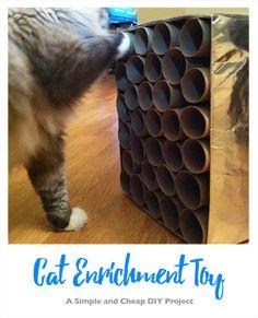 Dyi Cat Toys, Diy Toys, Cat Toilet, Toilet Paper Roll Crafts, Cat Enclosure, Cat Garden, Love Your Pet, Cat Room, Toy Craft