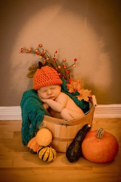 My favorite fall decor ahhhhhh the cuteness!