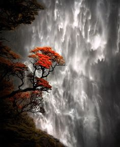 Devils falls, South Island, New Zealand