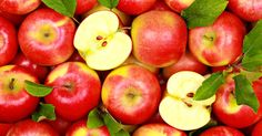 This is why apples pack such a seriously healthy punch! http://blog.lifeextension.com/2015/08/the-power-of-apple-polyphenols.html #apples #nutrition