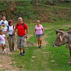 Nordic Walking, naturaleza y familia: la combinación perfecta para fomentar la salud en los niños