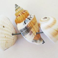 How to Drill Seashells for Jewelry