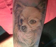 pomeranian tattoo - Google Search