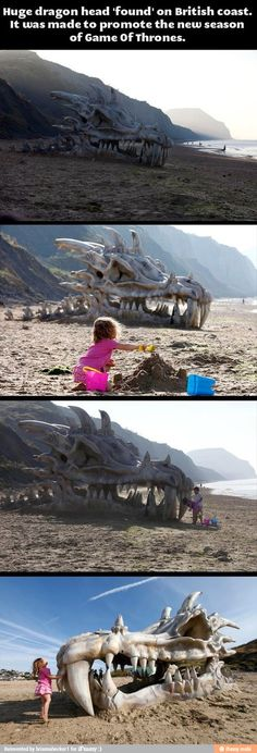 Dragon on the beach / iFunny :)