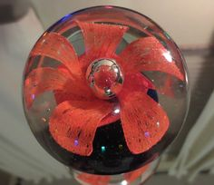 Studio Art Glass Blown FLOWER Paperweight-ORANGE BLOSSOM W/Cobalt
