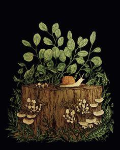 Art And Illustration, Illustrations, Fantasy Kunst, Fantasy Art, Painting Inspiration, Art Inspo, Kunst Inspo, Mushroom Art, Animes Wallpapers