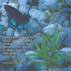"""Happiness is like a butterfly which, when pursued, is always beyond our grasp, but, if you will sit down quietly, may alight upon you."" ―Nathaniel Hawthorne  Photo/artwork: Butterfly resting on the gravel road at dusk, Brown County, Indiana. 2015."