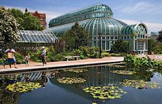 Steinhardt Conservatory, Brooklyn Botanic Garden Palm House and reflecting pool.