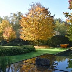 Garden Pool, Water Garden, Garden Paths, Outdoor Landscaping, Outdoor Gardens, Landscape Design, Garden Design, Garden Architecture, Water Features