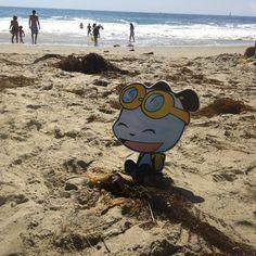 PandaOki at Laguna beach!! #adventures #ComicGate #kids #family #childrensbooks #art #books #anime #fun #exercise #read #bookclub #MustRead #reading #authors #pandas #pandaoki #kids #family #comics #beach #California #surfboard #outside #unplug #beachtrends #lagunabeach