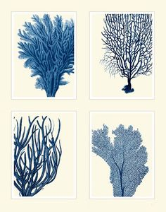 Blue Coral Print on 4 Panels Nautical print beach by NauticalNell, $30.00