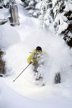 Unless you ski powder you will never understand Powder. Barbara J. Mertus