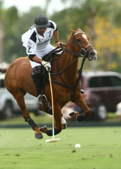 Photo Gallery: US Open - Living Polo