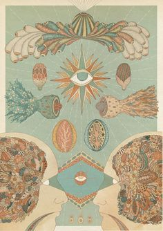 Vision anatomy illustration by Katie Scott (one of my favorites, she also did some artwork for Bombay Bicycle Club) Art And Illustration, Book Illustrations, Kunst Inspo, Art Inspo, Arte Dope, Psy Art, Psychedelic Art, Art Design, Illustrators
