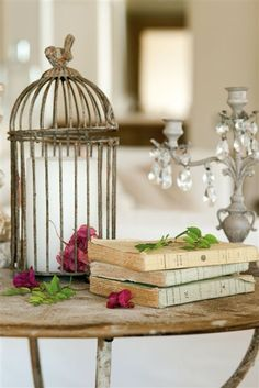 I love French country style, shabby chic , romantic and white style. This is just random things I love. Boutique Deco, Bird Cages, Vintage Birds, Vintage Decor, Rustic Decor, Partys, Cottage Style, Bird Houses, Sweet Home