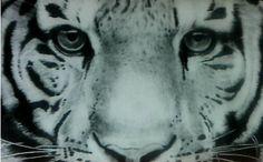miren mi nuevo dibujo de un tigre :)