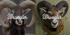 wrangler-wrangler-vs-wrongler-outdoor-print11-Adflash