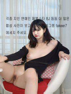 진자림 합성 nude fake