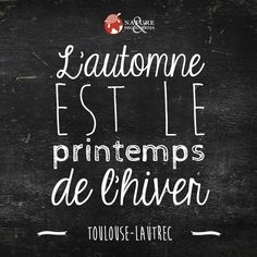 L'automne... French Phrases, French Quotes, Message Light Box, Positive Quotes For Life Happiness, Fall Inspiration, Image Fb, Staff Motivation, Decoration Vitrine, Good Sentences