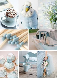 Soft Blue Inspiration Moodboard                              …