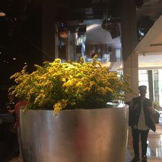 Yellow flowers third arrangement. #yellowflowers #yellow #flowers #flowerarrangement
