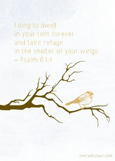 I long to dwell in your tent forever and take refuge in the shelter of your wings. – Psalm I long for that, too. I want to be embraced under the wings of God. I can't imagine a more lovely place to call home. Bible Verses Quotes, Bible Scriptures, Psalm 61, He Is Lord, Special Prayers, Healing Words, Walk By Faith, The Kingdom Of God, Spiritual Quotes