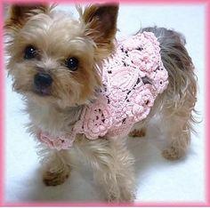 crochet dog dress