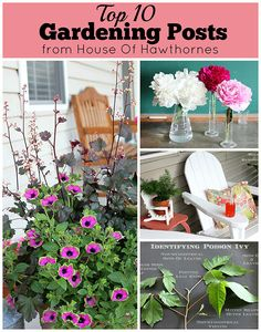 Awesome collection of gardening ideas to get you in the mood for spring planting    via houseofhawthornes.com