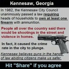 Should be a law every home has gun, ammo and know proper gun control, hitting what you aim at. Should be a law every home has gun, ammo and know proper gun control, hitting what you aim at. Gun Quotes, Life Quotes, Pro Gun, Gun Rights, Out Of Touch, Conservative Politics, Gun Control, Truth Hurts, Thats The Way