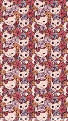 Cat iphone wallpaper