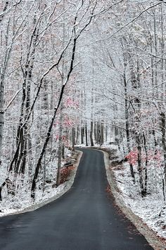 Gatlinburg, Tennessee... Wintertime is beautiful and not nearly as crowded :) We've been a couple times and would love to go back :)
