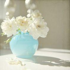 roses -- The French Tangerine: ~ aqua inspiration