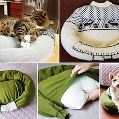DIY easy to make cat bed! If your cats are taking over the bed then put this near it or next to it and it should help to keep them off! #catsdiycrafts #catsdiybed