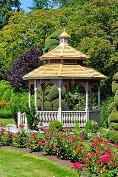 Wooden gazebo and colorful roses in the garden