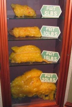 What? Only 1 lb of Fat Loss This Week? What Does Your Fat ...