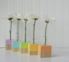Color block test tube vases