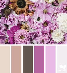 Flora Hues - https://www.design-seeds.com/flora/flora-hues-30