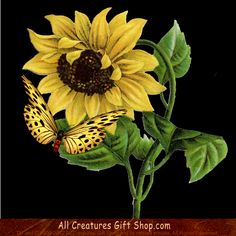 Sunflower and Butterfly Tshirt ... bright yellow sunflower and a matching beaufiful yellow and brown butterfly. Beautiful on lots of styles and colors of Tshirts.  *** PLEASE NOTE: The URL bar, TM  © won't be on the product you order. :-)