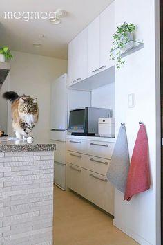 キッチンにタオルフックを付けてみた | メグメグの好奇心♪♪ 収納インテリア