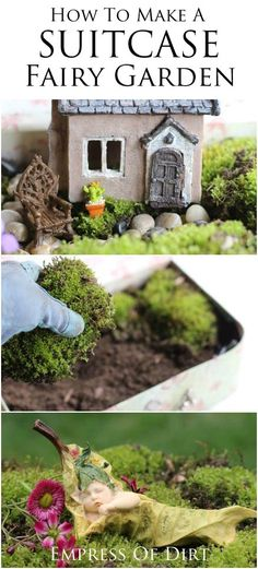 700 best Great Garden Ideas images on Pinterest in 2018 | Cacti ...