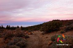 Atardecer en Portillo Alto #sunset #anaga #hiking #trekking #landscape  #outdoors #nature #fotostenerife #tenerifesenderos