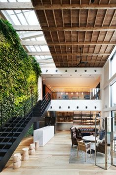 Indoor green wall - love