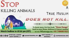 True Muslim dose not killing animals Must watch 30 daily Eid Mubarak Quotes, Eid Mubarak Wishes, Navratri Images, Funny Quotes, Funny Memes, Bhakti Yoga, Friday Motivation, Faith In God, Spiritual Quotes
