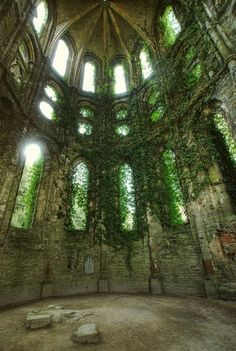 I want gothic windows and vines to cover my house.