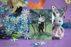 Five of Wands - The Rabbit Tarot