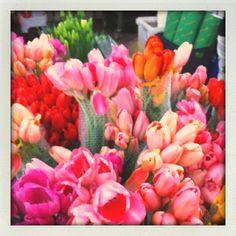 Carlsbad Flower Mart