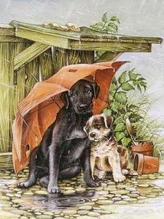 Two Puppy Dogs with Umbrella Shelter from the Rain Wall Picture Art Print Art And Illustration, Rain Art, Image 3d, Colouring Pics, Gif Animé, Vintage Dog, Pictures To Paint, Animal Paintings, Dog Art