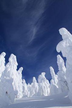 蔵王 山形 The rime on trees, Mount Zao, Yamagata, Japan I Love Winter, Winter Time, Art Beauté, Winter In Japan, Winter Schnee, Beautiful Places, Beautiful Pictures, Yamagata, Snow Art